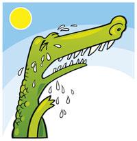 krokodilstraenen