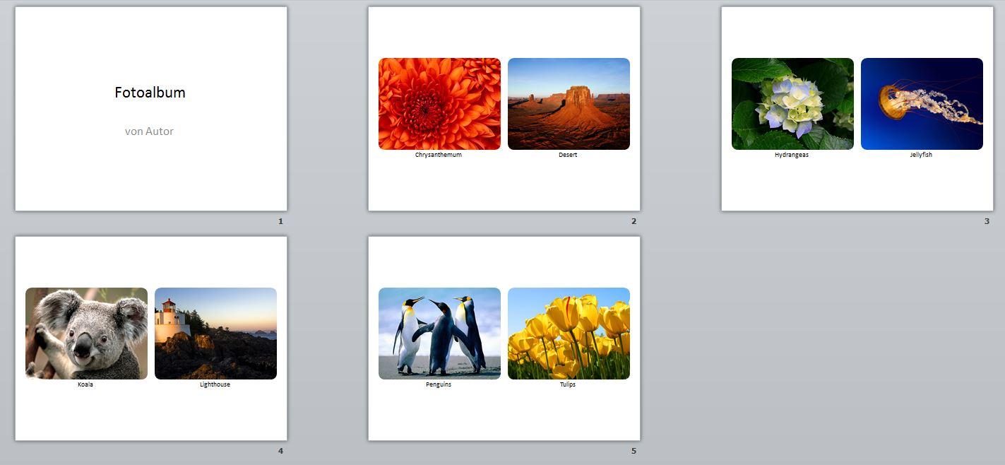 Ein Fotoalbum erstellen mit Microsoft PowerPoint 2010