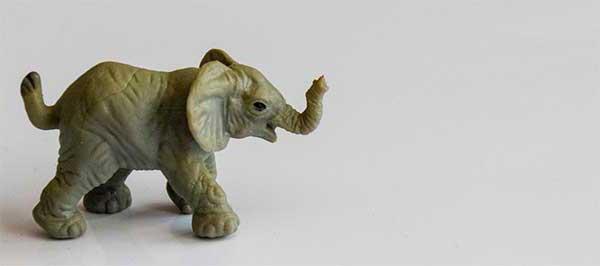 elefant_600