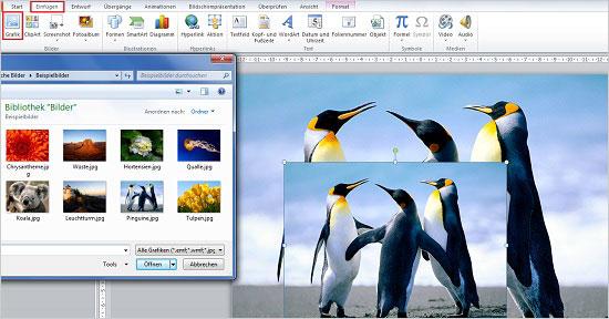 PowerPoint - Bildausscchnitte