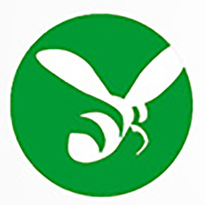 Logo als Autotext