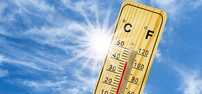 40 Grad und mehr. Foto: