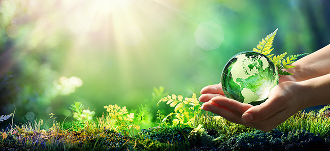 Umweltschutz tut Not. Foto: Romolo Tavani / Adobe Stock